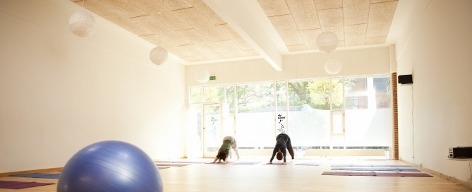 Nordisk Yoga, yoga-workshop