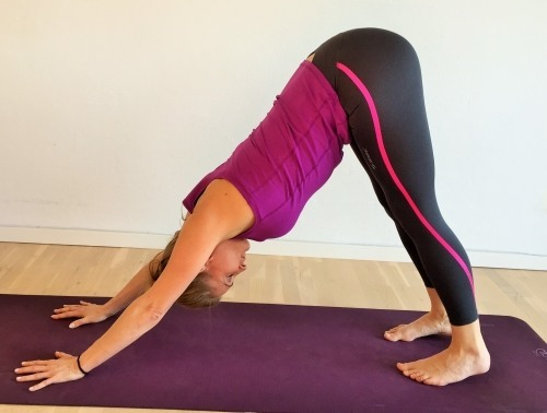 yoga hunden - adho mukha svanasana