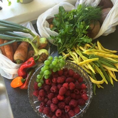 grøntsager, suppe, økologi